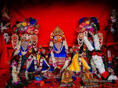 Hare Krishna! Iskcon Mumbai Celebrates Rath Yatra in more than 25 places each year!