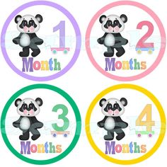 Monthly Baby stickers Baby Month Stickers Baby Milestone Stickers Monthly Baby Sticker Baby Shower Gift Precut Panda Bear Baby Girl Stickers