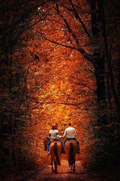 Horseback riding in the beautiful fall leaves.