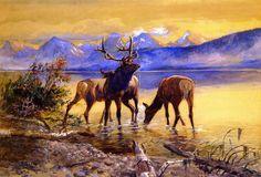 Charles Marion Russell - Elk in Lake McDonald,1906