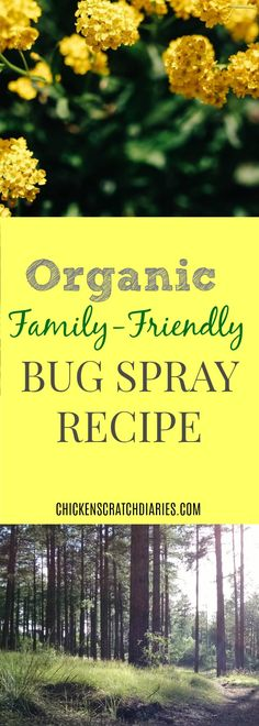 How to make your own natural, travel-size bug spray to protect your family on the go.
