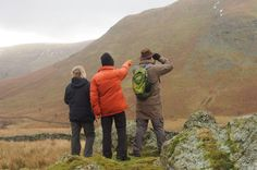 3-Hour Deer Watch Walk from Ullswater A guided wildlife walk in the Lake District to view the wild herds of red deer in Martindale. There's lots more to see including birds of prey and other mountain wildlife, a fascinating history and magnificent views.After meeting in Pooley Bridge, Ullswater, you drive up into the beautiful and remote valley of Martindale. The guide can provide lifts for up to 6 people.Once in Martindale, your guide will show you around the ancient farmstea...
