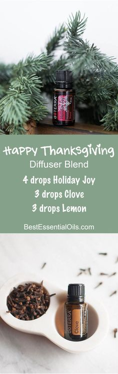 Happy Thanksgiving doTERRA Diffuser Blend doTERRA Clove Essential Oil Uses