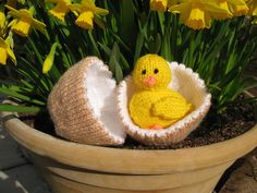 Amigurumi Chick and Egg - FREE Knitting Pattern / Tutorial