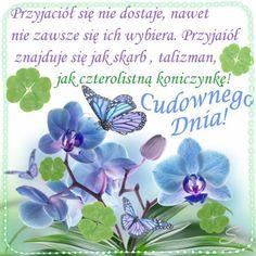 Kartka pod tytułem 🍀Przyjaciel to skarb i szczęście! Good Morning Prayer, Morning Prayers, Mandala, Flowers, Cards, Motto, Maps, Flower, Mottos