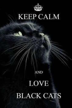 Keep Calm & Love Black Cats