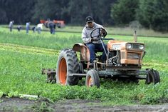 A new report argues against critics who claim industrial agriculture is the only way to meet the nutritional needs of a growing population.