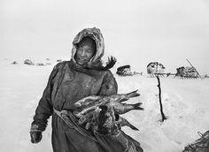"Nenets diet, ""Nenets of Siberia"" series by Sebastião Salgado"