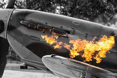 Battle of Britain Memorial Flight Spitfire Airplane, Supermarine Spitfire, Ww2 Planes, Vintage Air, Battle Of Britain, Military Aircraft, Beautiful Birds, Wwii, Concept Art