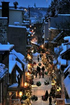 Christmas in Quebec City, Canada. I've been to Quebec City in the winter and its absolutely gorgeous! Dream Vacations, Vacation Spots, Oh The Places You'll Go, Places To Travel, Beautiful World, Beautiful Places, Amazing Places, Beautiful Flowers, Santa Claus Village