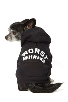 Worst Behavior Dog Hoodie | Shop Sale at Nasty Gal