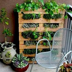 Horta para pequenos espaços usando pallet!  #horta #pallet #diy #façavocemesmo #decoração #jardim #garden #inspiração #idea #ideiascriativas #instaidea #inspiration #morarmaispormenos