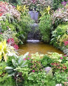 Waterfall and Koi Pond at the Buchart Gardens, British Columbia Outdoor Ponds, Ponds Backyard, Koi Ponds, Buchart Gardens, Outdoor Water Features, Waterfall Fountain, Backyard Water Feature, Pond Landscaping, Water Pond