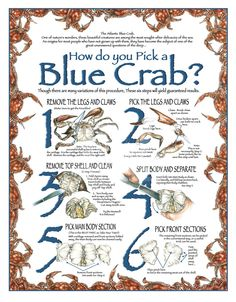 Ordering some blue crab this summer? Here are some tips for eating this tasty treat!