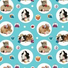 "Guinea Pigs ""The Crazy Gang"" Gift Wrap & Tags (2+2):Amazon:Kitchen & Home"