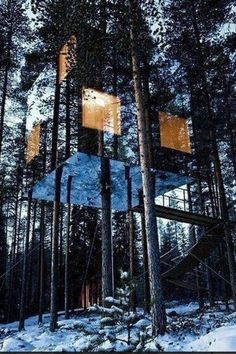 Mirrored Tree House In Sweden.