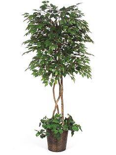 How Do I Clean Artificial Indoor Trees