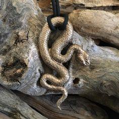 Grosse Schlange