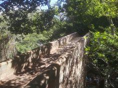 Puente de piedra sendero rio de la miel Texture, Plants, Honey, Scenery, Surface Finish, Plant, Planets, Pattern