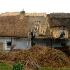 Renewing the thatch, by unknown author. Repinned by WI/IE. _____________________________Do feel free to visit us on http://www.wonderfulireland.ie/inland-east/ferns/#/ for lots more pictures and stories of beautiful Ireland