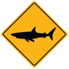 Shark Sign wall decals mitch room, need a pole sticker