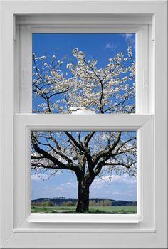 vinyl casement windows    #VinylCasementWindowsMilwaukee