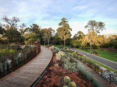 Tan Track at Royal Botanic Gardens - Melbourne - Victoria | Qantas Travel Insider