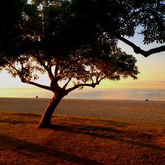 Platja de Mataró Costa, Barcelona, Spain, Celestial, Sunset, Outdoor, Beach, Outdoors, Sunsets