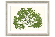 Miranda Baker, Green Coral III on OneKingsLane.com