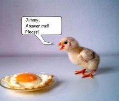 jimmy i hope your ok in chicken heaven i know you have had a really i mean really hard life!!!
