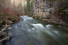 Logan River, Logan Canyon, Wasatch-Cache National Forest, Cache County, Utah by Alan Cressler