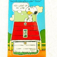 Vintage in Original Shrinkwrap Packaging- Snoopy Dog House Handpainted Switchplate Switch Plate by Monogram Products in Largo FL. Says c1965 United