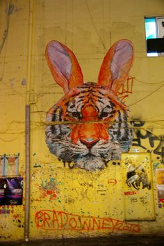 hongdae Graffiti Art, Art En 2d, Hongdae, Public Art, Urban Art, Art Images, Whimsical, Artsy, Sidewalks