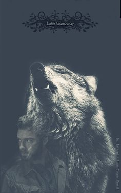 """""""And this is what happened, ands this is why the caribou and the wolf are one; for the caribou feeds the wolf, but it is the wolf that keeps the caribou strong. Wolf Love, Beautiful Creatures, Animals Beautiful, Cute Animals, Majestic Animals, Wild Animals, Wolf Spirit, My Spirit Animal, Der Steppenwolf"""