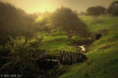 Dreamy Landscape by Mike Shaw, a Cheshire UK based photographer