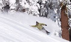 How to Choose the Best Freeride Snowboard for you