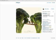 Hängebrücke an Brokkoliröschen: Miniaturkunst von Tatsuya Tanaka