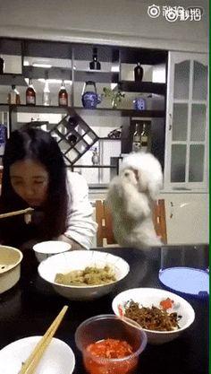 Hey du..... Ich hab vielleicht auch Hunger. :)