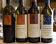 Interpreting the Portuguese Wine Label