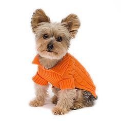 3cb95c733 Stinky G Tangerine Aran Dog Sweater Size  10 Small Dog Jumpers