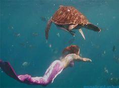 Little Mermaid Erg Mooie 4401