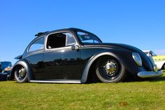 Love these Classic VW's