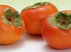 Buy Matsumoto Persimmon Tree from Ty Ty Nursery Bamboo Plants, All Plants, Berry Plants, Color Naranja, Plant Nursery, Natural Health Remedies, Fruit Trees, Grocery Store, The Cure