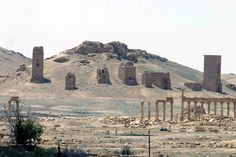 DAMASCUS, Sept 4 (Reuters) -- Islamic State has blown up three ancient funeral towers in the ancient city of Palmyra, Syria's antiquities chief said on F...