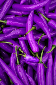 ^Purple peppers