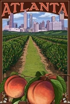 Georgia - Peach Orchard Scene - Lantern Press ArtworkQuality Poster Prints Printed in the USA on heavy stock paper Crisp vibrant color image that is resistant to fading Standard size print, ready for framing Perfect for your home, office, or a gift Peach Orchard, Nailart, Georgia On My Mind, Vintage Travel Posters, Ciel, Savannah Chat, Vintage Art, Vintage Signs, Vintage Prints