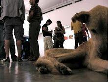 """""""...Lo importante para mí era la hipocresía de la gente: un animal así se convierte en foco de atención cuando lo pongo en un lugar blanco donde la gente va a ver arte pero no cuando está en la calle muerto de hambre. Igual pasó con Natividad Canda, la gente se sensibilizó con él hasta que se lo comieron los perros"""", ... """"Nadie llegó a liberar al perro ni le dio comida o llamó a la policía. Nadie hizo nada"""".  Guillermo Habacuc Vargas"""