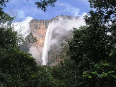 Angel Falls - Salto Angel Waterfall or Angel Falls is the highest free falling waterfall in the world with a height of 3212 feet, with no barriers fall around 2647 feet. This waterfall is located in the Rio Caroni, Canaima, Venezuela. Famous Waterfalls, Beautiful Waterfalls, Angel Falls Venezuela, Monte Roraima, Places Around The World, Around The Worlds, Paradise Falls, Largest Waterfall, Les Cascades