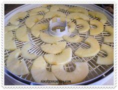 apples on dehydrator tray