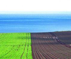 Fertile farming land near Wynyard in the north west coast region of Tasmania.